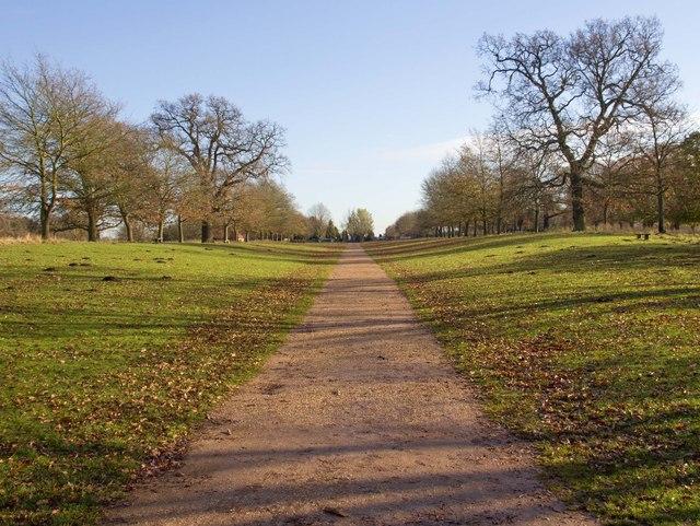 Driveway, Charlecote Park