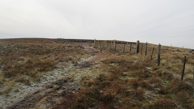 Pennine Way on Windy Gyle