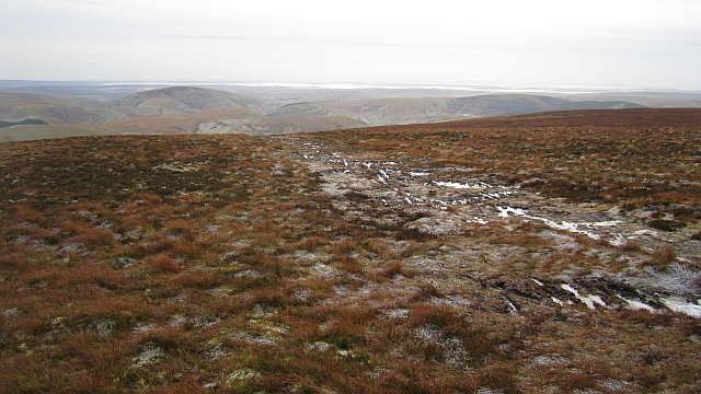 A path on Windy Gyle