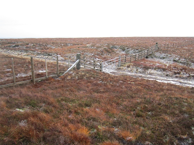 A gate on Windy Gyle