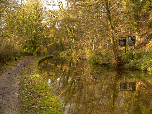 Peak Forest Canal, River Wood