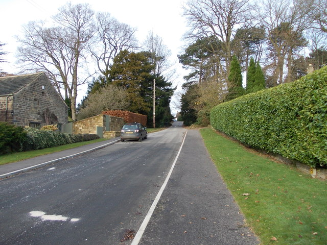 Hall Drive - viewed from Hall Rise