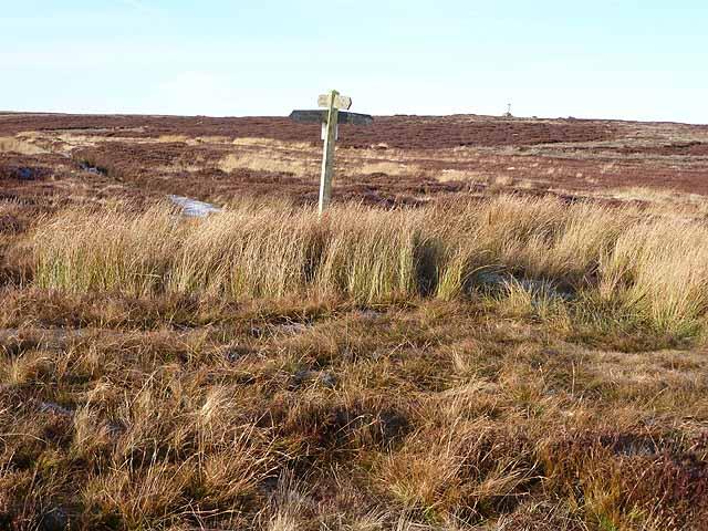 Signpost near Stobb Cross