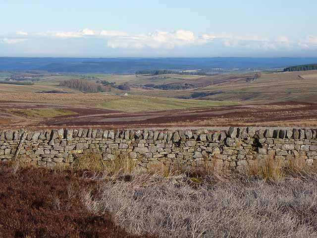 View over Westburnhope Moor