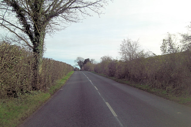 Morestead Road climbs Twyford Down