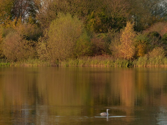 Autumn at the Watermead Country Park