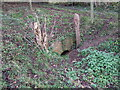 SU0697 : Culvert, Wildmoorway Upper Lock, Thames & Severn Canal by Vieve Forward