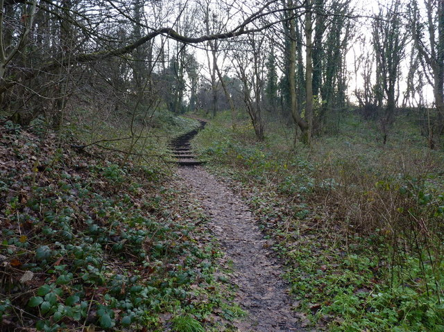Steps on a footpath up to Barrow Hill