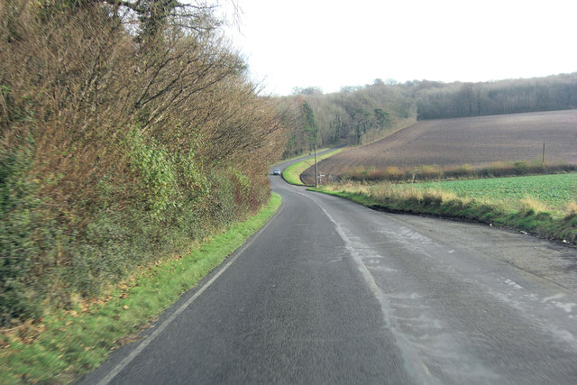 Belmore Lane beside Long Wood