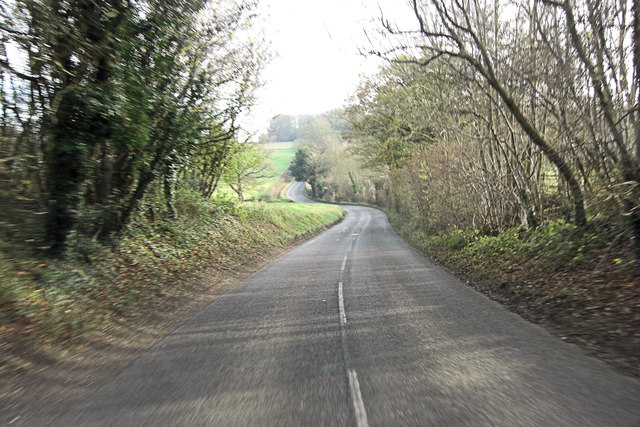 Belmore Lane north of Priest Wood