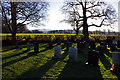 SD4964 : Halton burial ground by Ian Taylor