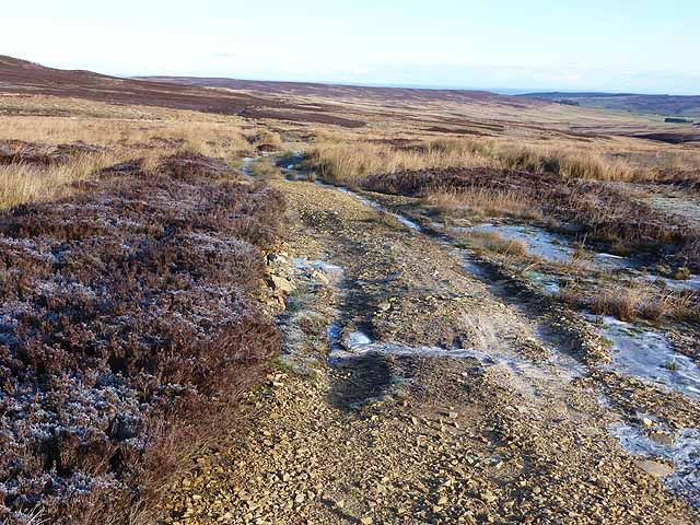 The Broad Way on Halleywell Moss