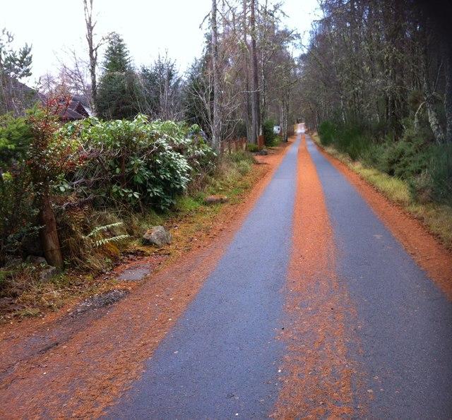 Craigdarroch Drive