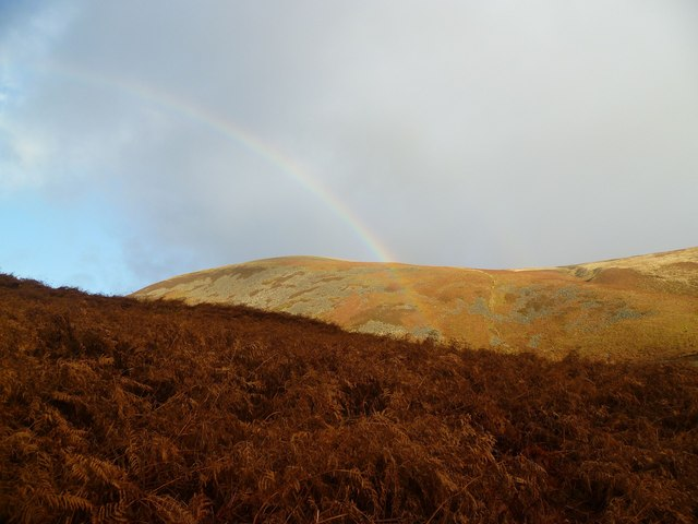 Rainbow and Bracken