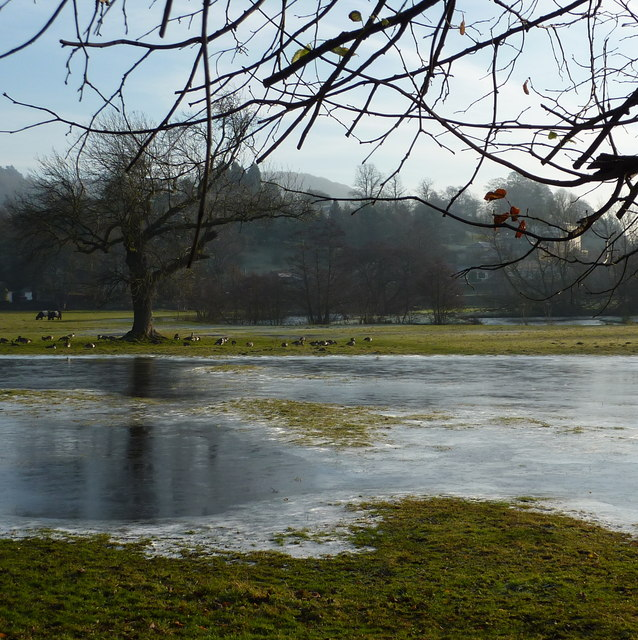 Frozen flooded field