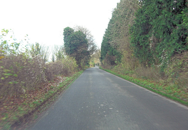 Unnamed lane north of Warnford Plantation