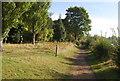 TQ1667 : Thames Path by N Chadwick