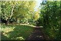 TQ1767 : Thames Path by N Chadwick