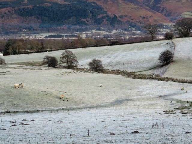 Frosted fields near Braithwaite