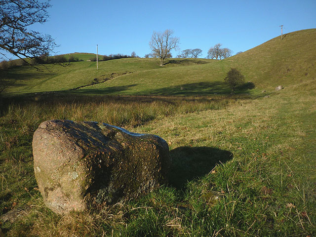 Erratic boulder by the footpath