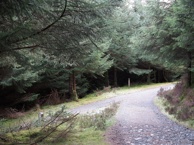 Forestry road junction south of Ullister Hill
