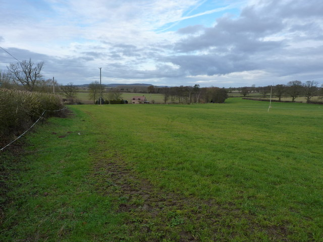 Pastureland north of Cross Houses