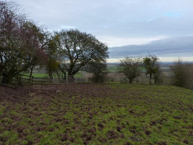 Muddy bridleway above Underton