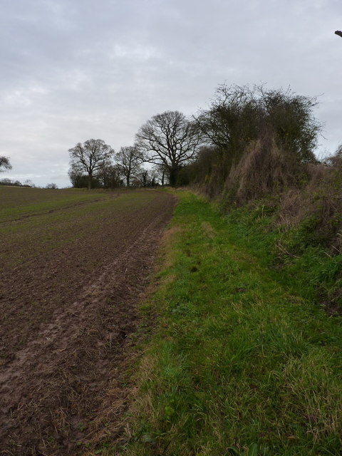 A footpath diversion south of Meadowley