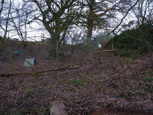 Pheasant pens near Upton Cressett