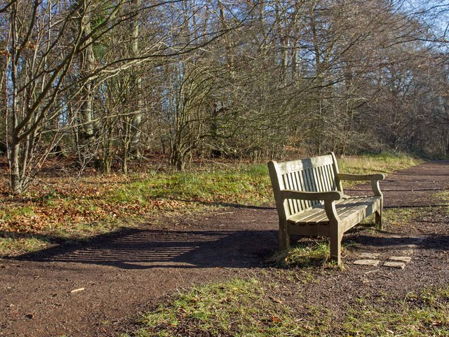 Bench by the footpath, Wandelebury Country Park