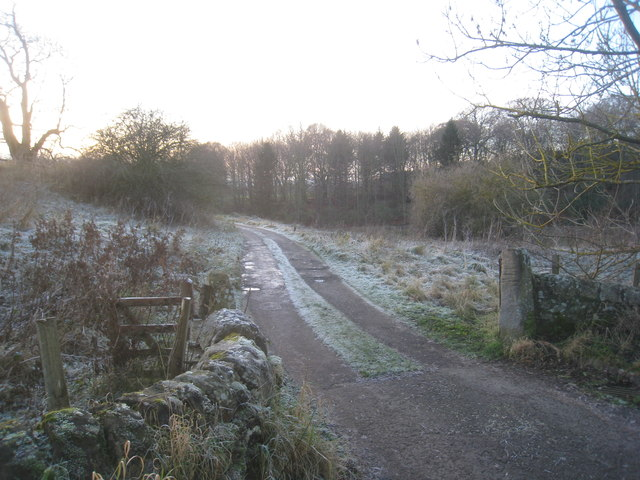 Track to Corbridge Mill