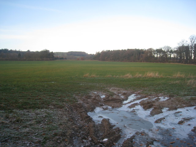View towards Sandhoe