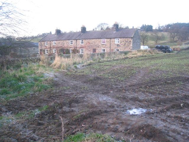 Anick Grange Cottages