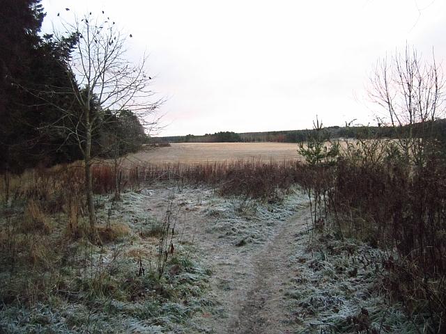 Fields, Ryland