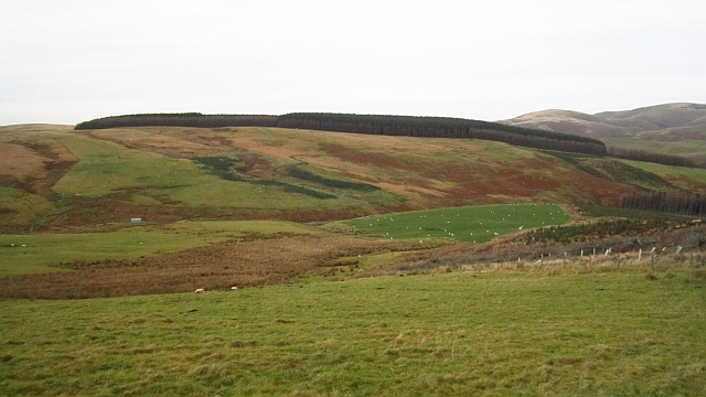 Fields above Kelsocleugh