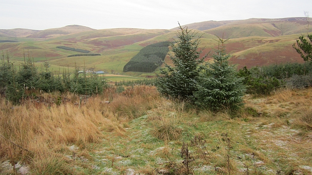 Path , Kelsocleuch Rig