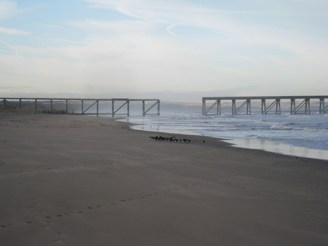 Oystercatchers, broken pier and spray