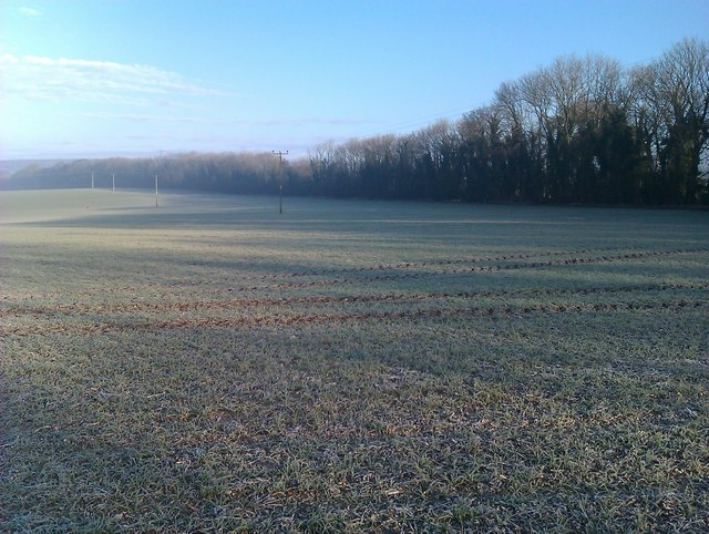 Frosty fields on edge of Clanfield