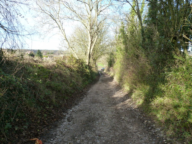 Public Way out of Walderton