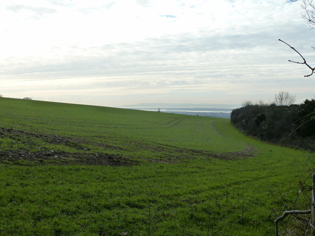 Arable land on the slope of Adsdean Down