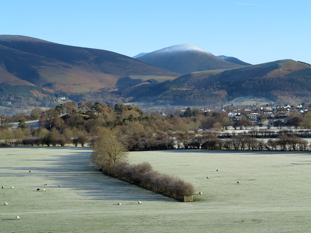 Field north of Little Braithwaite