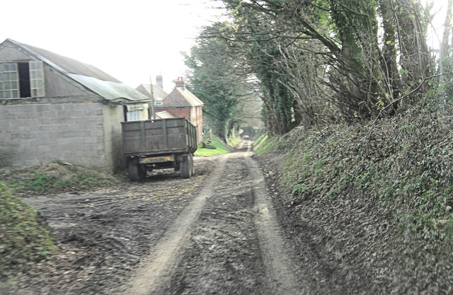 Vinnels Lane passes Garrett's Farm