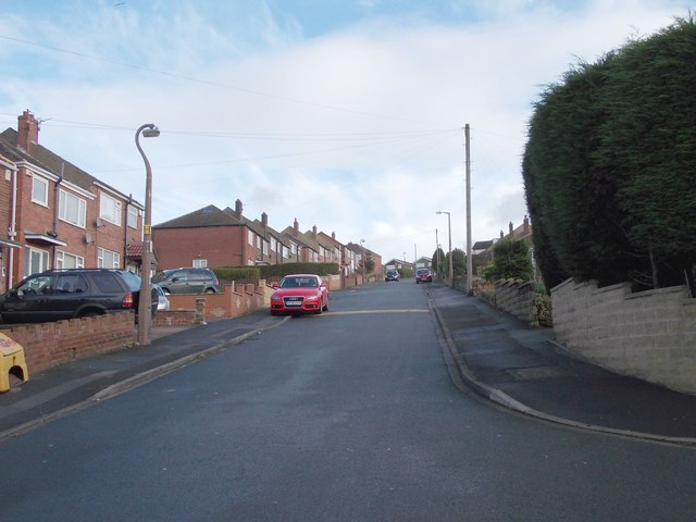 Trueman Avenue - viewed from Clarkson Avenue