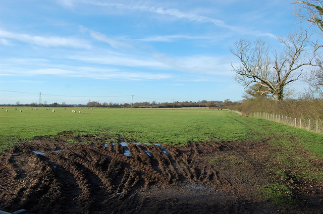 Muddy Field near Hamstreet