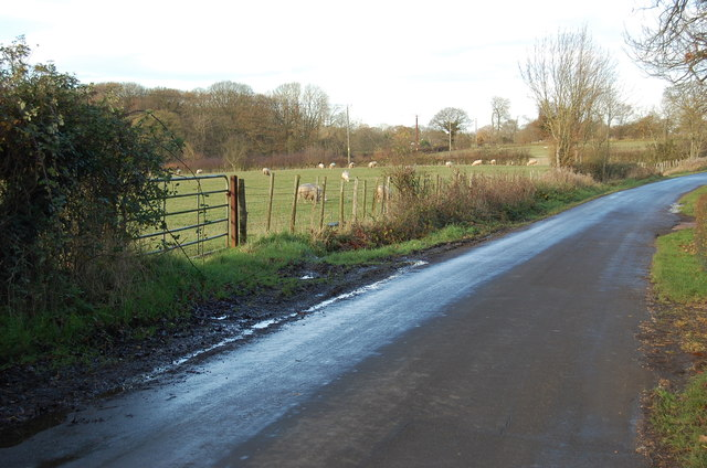 Unnamed lane to Horton Green