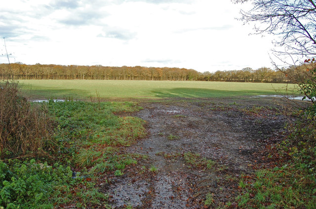 Field off Hornash Lane