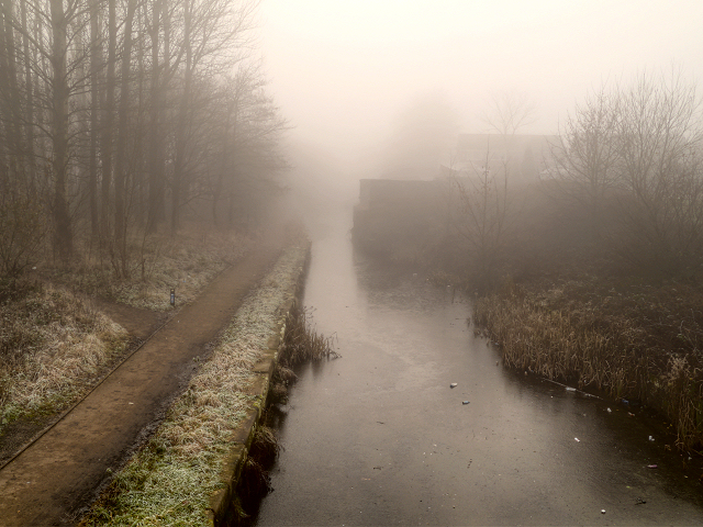 Foggy Canal, Radcliffe
