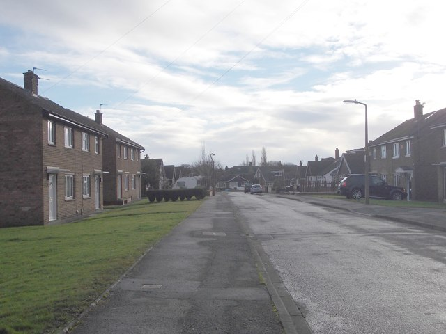 Mount Avenue - Leeside Road
