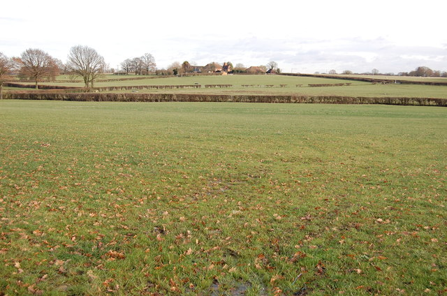 Fields off Bethersdan Road