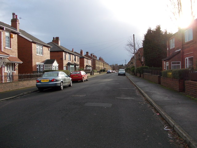 Mortimer Avenue - looking towards Healey Lane